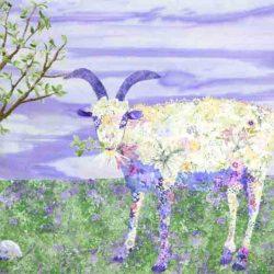 Girly Goat-In Progress